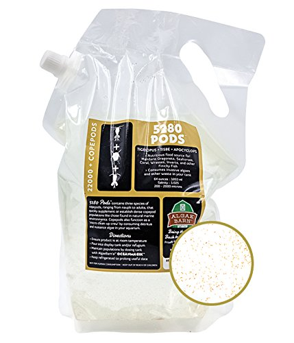 AlgaeBarn 5280 Pods :: Live Copepods :: Three Pod Species Tisbe + Tigriopus + Apocyclops :: Clean Your Tank & Mandarin & Finicky Fish Food (21,200+ Pods) (Tamaño: 21,200+ Pods)