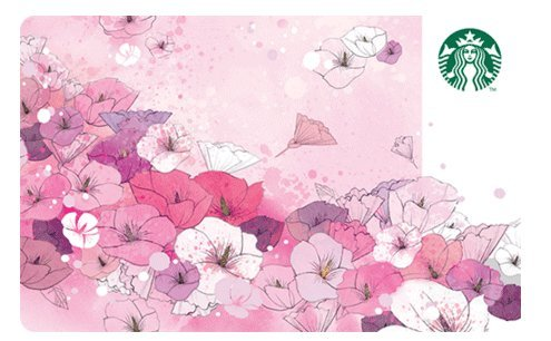 Starbucks Spring 2016 Limited Edition Pink Rose Of Sharon New Collectible Gift Cards Starbucks (Pink Gift Card Balance)