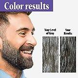 Just For Men Touch of Gray Mustache & Beard, Beard