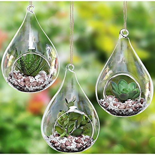 Set of 3 Teardrop Design Hanging Glass Faux Succulent Container Vases / Artificial Plant Terrarium Pots
