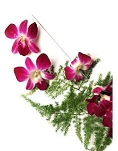 Fresh Flower Lei Making Kit