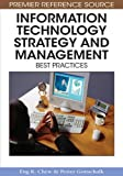 img - for Information Technology Strategy and Management: Best Practices book / textbook / text book