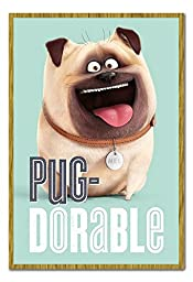 The Secret Life Of Pets Mel Pug-Dorable Poster Magnetic Notice Board Oak Framed - 96.5 x 66 cms (Approx 38 x 26 inches)