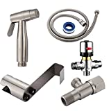 CIENCIA Bidet Spray Kit Stainless Steel Diaper Sprayer for Toilet Hand Held Side Sprayer with Thermostatic Mixing Valve, Shower Valve, Shower Holder and Shower Hose 1.2m, WS024AF1A