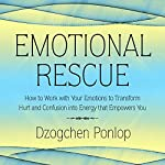 Emotional Rescue: How to Work with Your Emotions to Transform Hurt and Confusion into Energy That Empowers You | Dzogchen Ponlop
