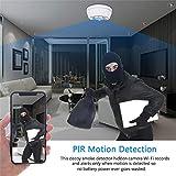 Hidden Camera Smoke Detector - Spy Camera 180