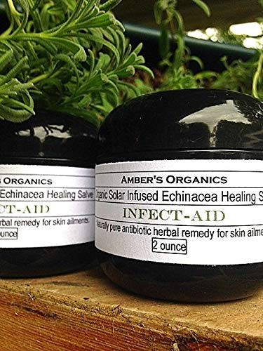 HIGH Germination Seeds:Organic Echinacea Heal Aid Solar Infused Salve. Handcrafted - Echinacea Heal