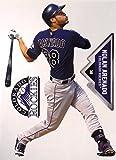 """Nolan Arenado FATHEAD Colorado Rockies Logo + Bonus Graphic, Total of 3 Official MLB Vinyl Wall Graphics 7"""" INCH"""
