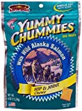 Arctic Paws Vita Chummiest 4-Ounce Yummy Chummies Vitamin Treats (Hip & Joint)