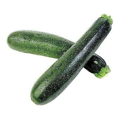 50 BLACK BEAUTY ZUCCHINI SUMMER SQUASH Cucurbita Pepo Vegetable Seeds : Vegetable Plants : Garden & Outdoor