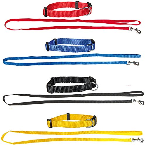 Set aus: 4 Welpenhalsbänder + 4 Welpenleinen im Set 4 Farben ideal für Züchter oder Sparpaket Welpenhalsband mit Leine als Set