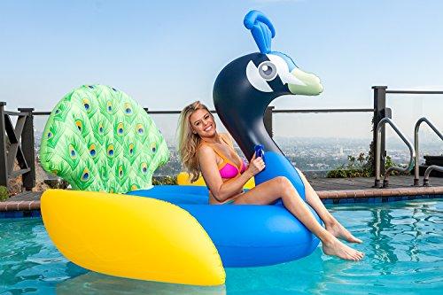 Cococabana Pool Lounge Peacock]()