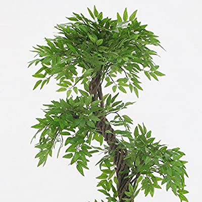 Vert Lifestyle Beautiful Artificial Plants and Trees, Large Contemporary Japanese Fruticosa Tree, Handmade Using Real Bark & Synthetic Leaves, Indoor Plant - 165cm Tall.