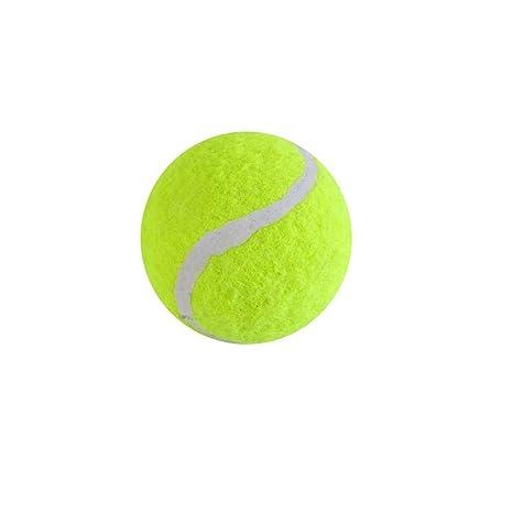 P-H Pelota de Juguete para Mascotas de Tenis: Amazon.es: Productos ...
