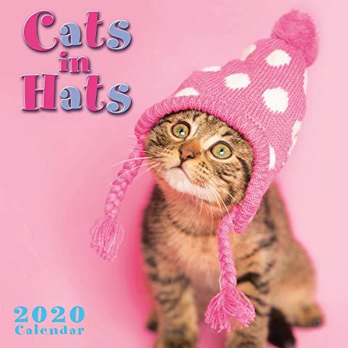 2020 Mini Wall Calendar: Cats in Hats