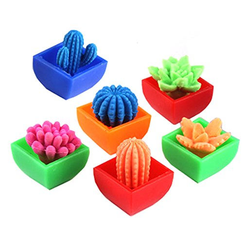 NiGHT LiONS TECH 1 pcs Magical multi-colored cactus ball inflated plant display toys Holiday gifts (style random send )