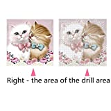 DIY 5D Diamond Painting by Number Kits, Full Drill