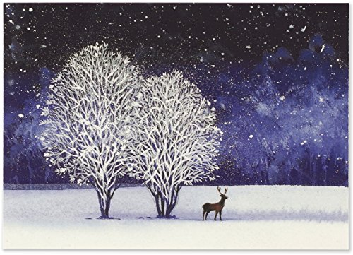Starry Night Deluxe Boxed Holiday Cards (Christmas Cards, Greeting Cards) (Boxed Cards Night Christmas)
