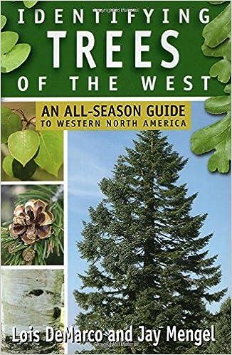 Identifying trees of the west an all season guide to western north identifying trees of the west an all season guide to western north america lois demarco jay mengel 0011557014723 amazon books fandeluxe Gallery