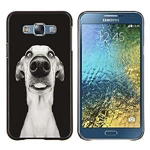 - Funny Dog Puppy Pet - - Cubierta del caso de impacto con el patr??n Art Designs FOR Samsung Galaxy E7 E7000 Queen Pattern