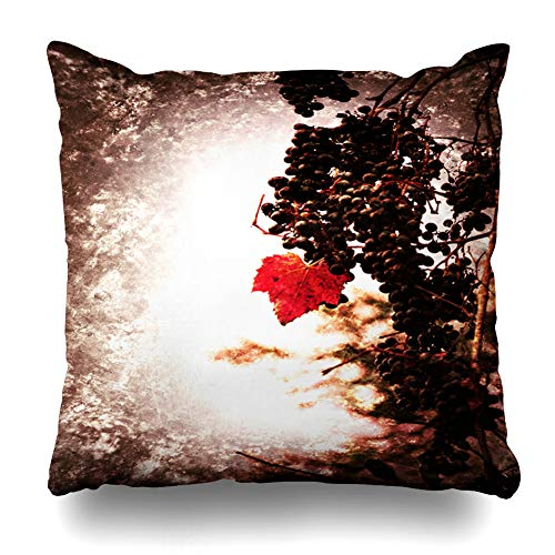 Ahawoso Throw Pillow Cover Grape Blue Agriculture Bunch Ripe Muscat Grapes Red Leaf Wine Food Drink Purple Antique Autumn Zippered Pillowcase Square Size 18x18 Inches Home Decor Pillow Case