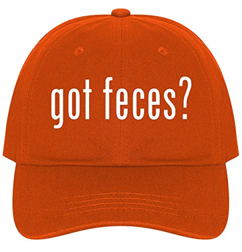 The Town Butler got Feces? - A Nice Comfortable Adjustable Dad Hat Cap, Orange