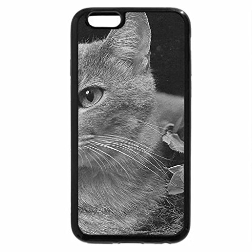iPhone 6S Case, iPhone 6 Case (Black & White) - A gray cat with roses