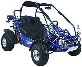 51evDw6RClL._AC_UL160_SR160160_ amazon com kandi 150cc 2 seat go kart (kd 150gka 2) sports KD 150Gka 2 Batteries Compartment at gsmx.co