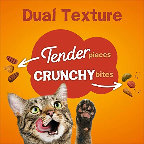 Purina Friskies Tender & Crunchy Combo Adult Dry Cat Food 4