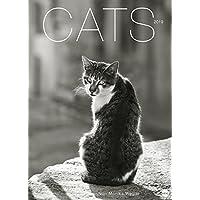Wegler Cats Edition - Kalender 2019