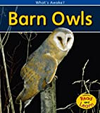 Barn Owls, Patricia Whitehouse, 1432925903