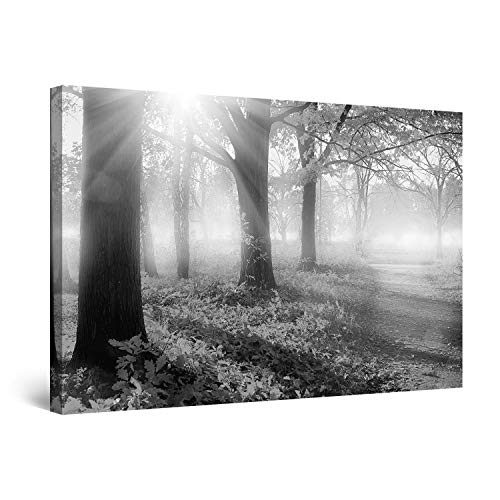 STARTONIGHT Canvas Wall Art Black and White Abstract Sunrise Morning Light Trees Nature Landscape, Painting 24 x 36 Inches (Make Your Own Wallpaper For Your Phone)