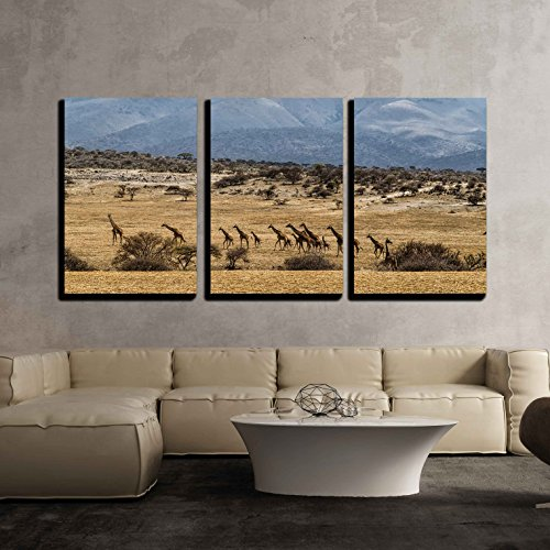 Giraffe of All Sizes in a Row Against Rolling Landscape of the Serengeti Tanzania x3 Panels