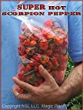 Trinidad Scorpion - 8oz Limited Quantity of Dried Scorpion Pods.