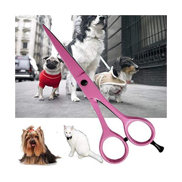 Tijeras de peluquería profesionales extra largo 7 Peluquería Tijeras -incomparable Color Rosa apta para de gatos y… 10