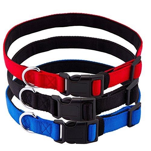 PetsLovers Premium Dog Collar Color