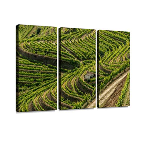 7houarts Douro Valley, Portugal Canvas Wall Artwork Poster Modern Home Wall Unique Pattern Wall Decoration Stretched and Framed - 3 ()