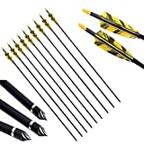 PG1ARCHERY 30 Inch Carbon Arrows with 4 Inch Shield Turkey Feathers Fletching & Removable Points Tips for Archery Hunting Practice Targeting, 6 Pack