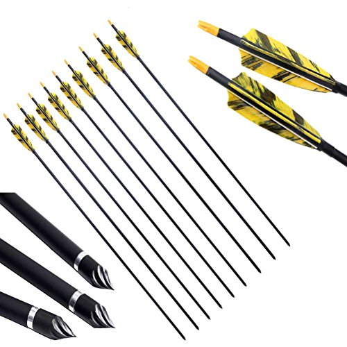 PG1ARCHERY 30 Inch Carbon Arrows with 4 Inch Shield Turkey Feathers Fletching & Removable Points Tips for Archery Hunting Practice Targeting, 6 Pack Yellow