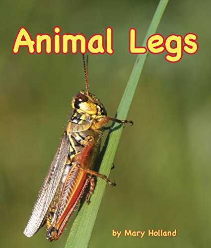 Animal Legs (Arbordale Collection)