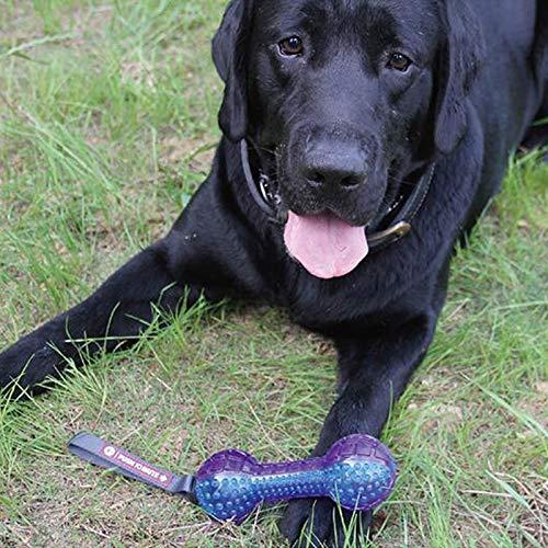 KGMYGS Giocattolo del cane dell'animale domestico domestico domestico del giocattolo del cane dell'animale domestico del giocattolo dell'animale domestico del giocattolo dell'animale domestico del giocattolo dell'animale 3e0293