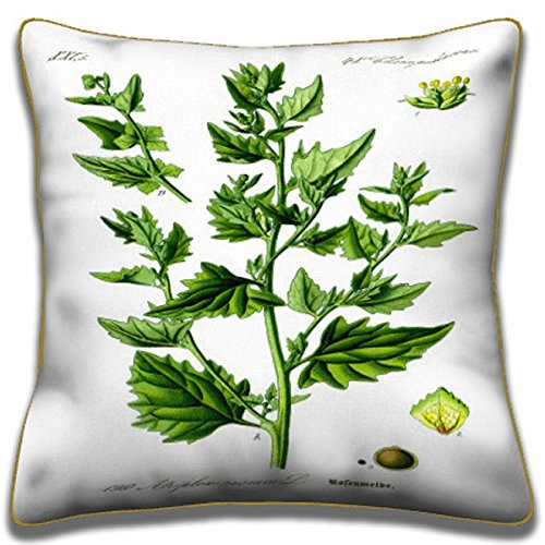 Tumbling Saltbush - Botanical Pillows (Tumbling Flowers)
