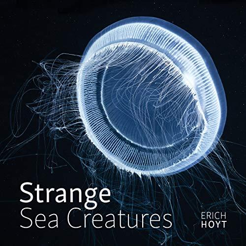 Book Cover: Strange Sea Creatures