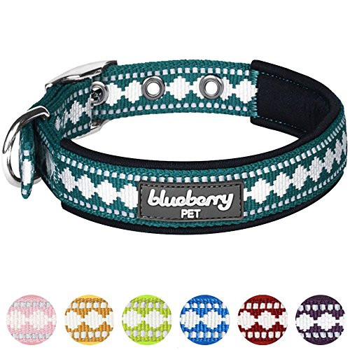"Blueberry Pet Colors Soft Collar in Neck 9-12.5"", Dogs"