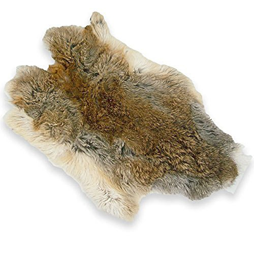 Natural Top Grade Rabbit Fur Pelt Skin Taxidermy (Brown) for sale  Delivered anywhere in USA