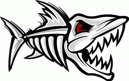 amazon com fish skeleton shark car bumper sticker decal 5 x 3 rh amazon com skeleton fish logo restaurant fish skeleton logo tshirt