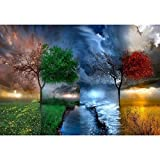 Shukqueen Diy Oil Painting, Adult's Paint by Number Kits, Acrylic Painting Four Seasons Tree 16X20 Inch (Frameless)