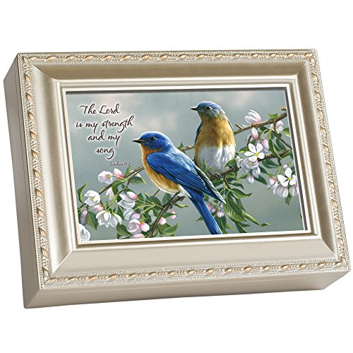 Cottage Garden The Lord is My Strength Song Silvertone Rope Trim Jewelry Music Box Plays Amazing Grace (Garden Cottage Accents)