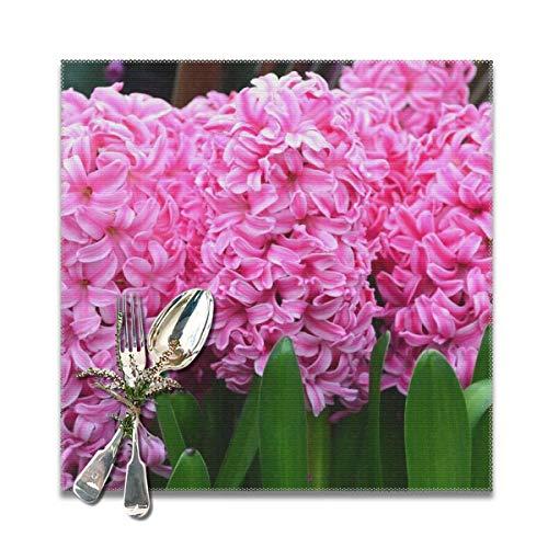 Roing Bo Hyacinth Pink Pearl 12