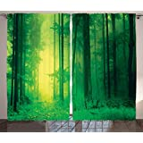 Mystic House Decor Curtains By Ambesonne, Fantasy Springtime Forest Tall Trees With Magical Light Fairytale Twilight Art Print, Living Room Bedroom Decor, 2 Panel Set, 108W X 84L Inches, Green